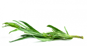 Tarragon Leaves, Whole
